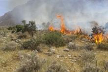 وقوع حريق در مراتع شهرستان همدان به صفر رسيد
