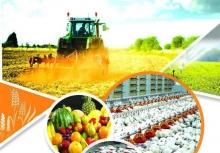 """برپایی نمایشگاه بینالمللی """"کشاورزی"""
