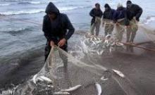 صدور پروانه عادی صید ماهی با قلاب در همدان