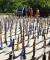 جمعآوری ۱۵۸ عدد قلیان طی ۲ روز در همدان/ پلمب ۲ باغ رستوران