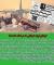 کودتای نقاب در پایگاه نوژه همدان به روایت آزاده «حمید طایفه نوروز» / کودتایی که در نطفه خفه شد