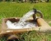 معاون حفاظت و بهره برداری شرکت آب منطقه ای همدان عنوان