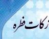 معاون مشارکتهای مردمی بهزیستی استان همدان