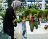 کلینیک تخصصی گل و گیاه در همدان راهاندازی شد