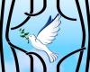 زندانیان جرائم غیرعمد استان همدان
